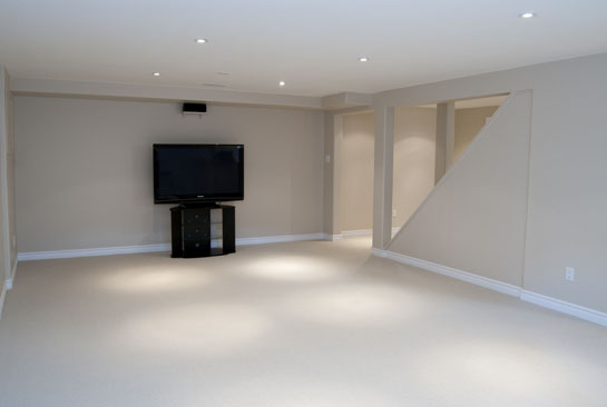 Wish List Home Improvements - Basement Renos